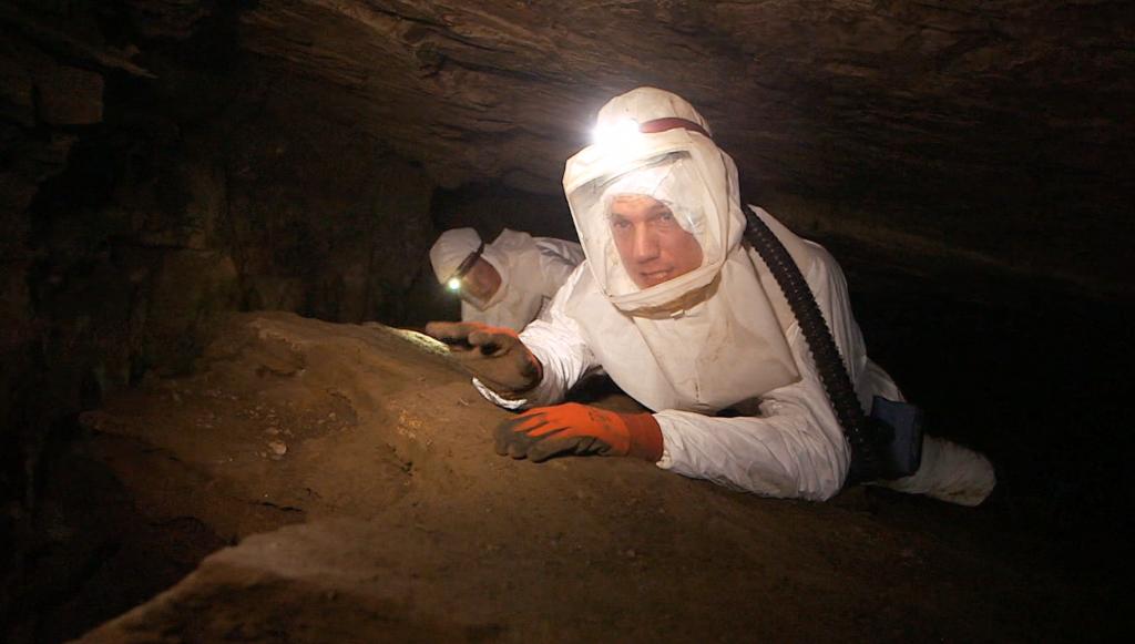 David in cave